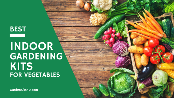 indoor gardening kits for vegetables